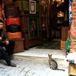 世界遺産旧市街のメディナ