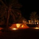砂漠のオアシスの中、静寂の夜を楽しもう